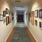 Hershey Area Arts Association