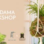 Terrarium Therapy Workshops